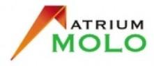 Logo Atrium Molo