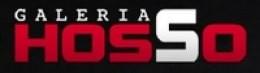 Logo Galeria Hosso