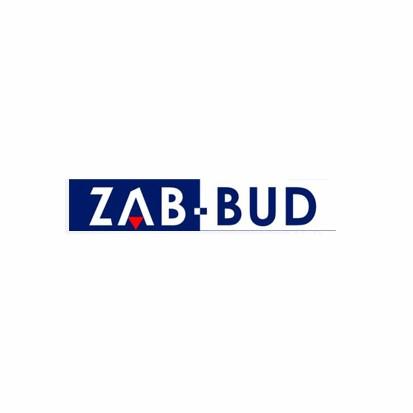 ZAB-BUD  Andrzej Zaboklicki