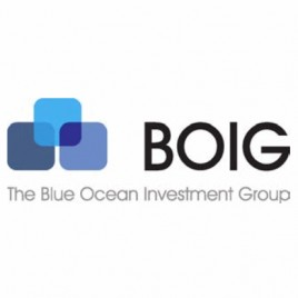 The Blue Ocean Investment Group