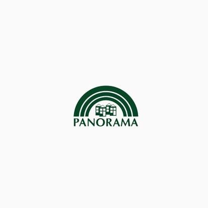 Panorama Development