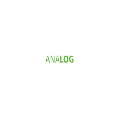 Analog Architecture