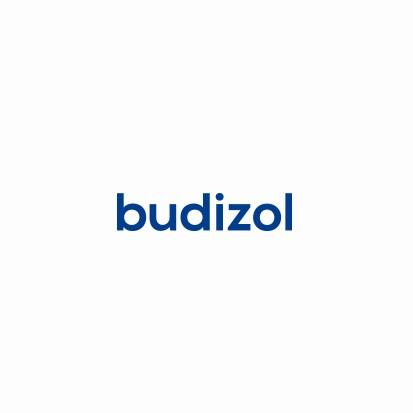 Budizol
