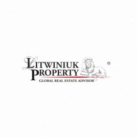 Litwiniuk Property