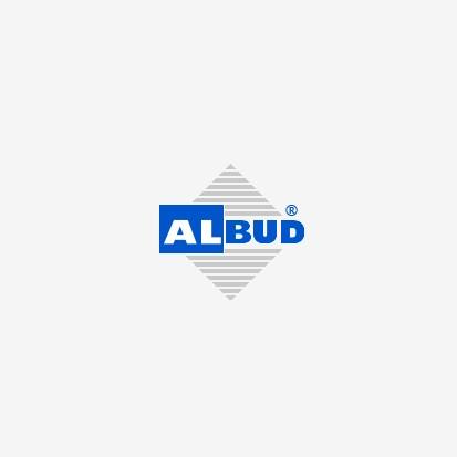 ALBUD RSA