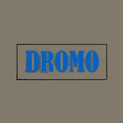 Przedsiębiorstwo Produkcyjno-Usługowe DROMO
