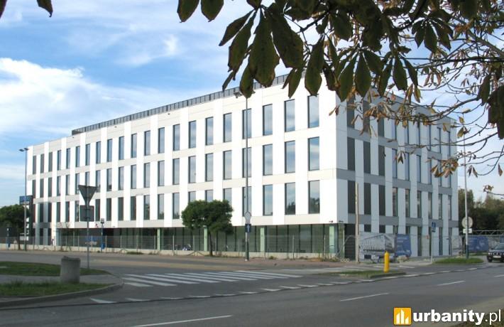 Lobos Office w Krakowie