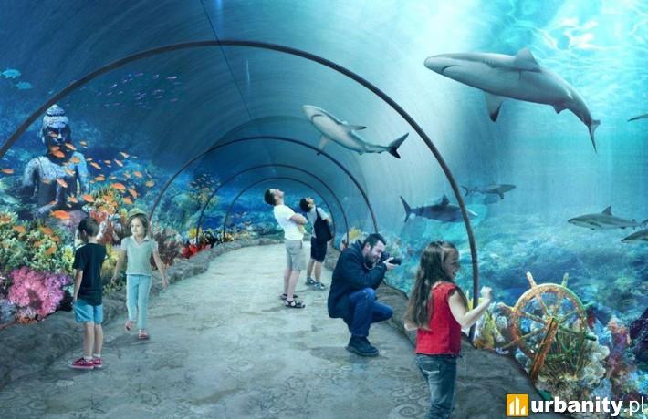Tunel akrylowy w łódzkim Orientarium - wizualizacja