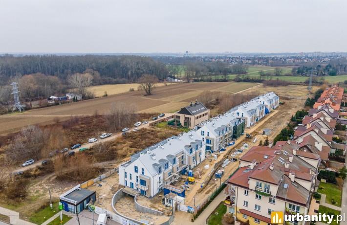 Vitalite - budowa (fot. Maciej Lulko)