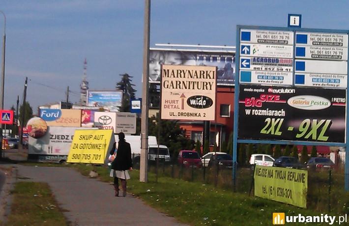 Reklamy zaśmiecają polskie miasta
