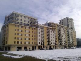 zdjęcie Natolin 2010