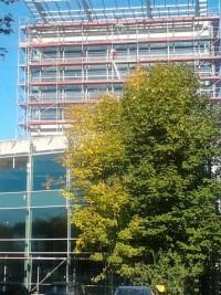 zdjęcie Nowe Katowickie Centrum Biznesu