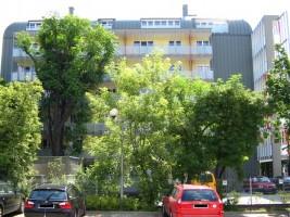 zdjęcie Apartamenty Czysta