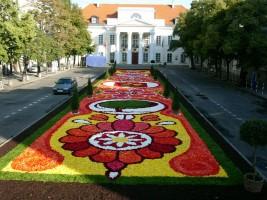 zdjęcie Pałac Mniszchów