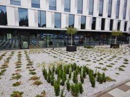 zdjęcie Biurowiec V.Offices