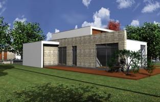 Dom typu D2